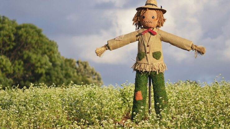 GREAT IDEA: Display a scarecrow in December to scare away the pandemic!