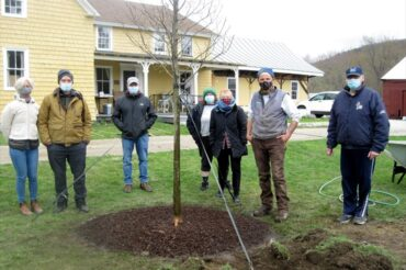 Tom Ingersoll's workshop at the GBHS Farmstead featured our new elm tree!